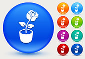 Rose Flower Icon on Shiny Color Circle Buttons. The icon is positioned on a large blue round button. The button is shiny and has a slight glow and shadow. There are 8 alternate color smaller buttons on the right side of the image. These buttons feature the same vector icon as the large button. The colors include orange, red, purple, maroon, green, and indigo variations.