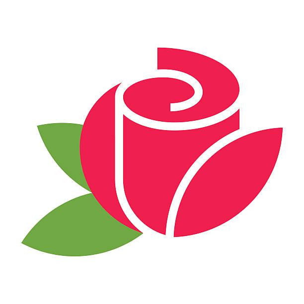 best rose petals illustrations royaltyfree vector