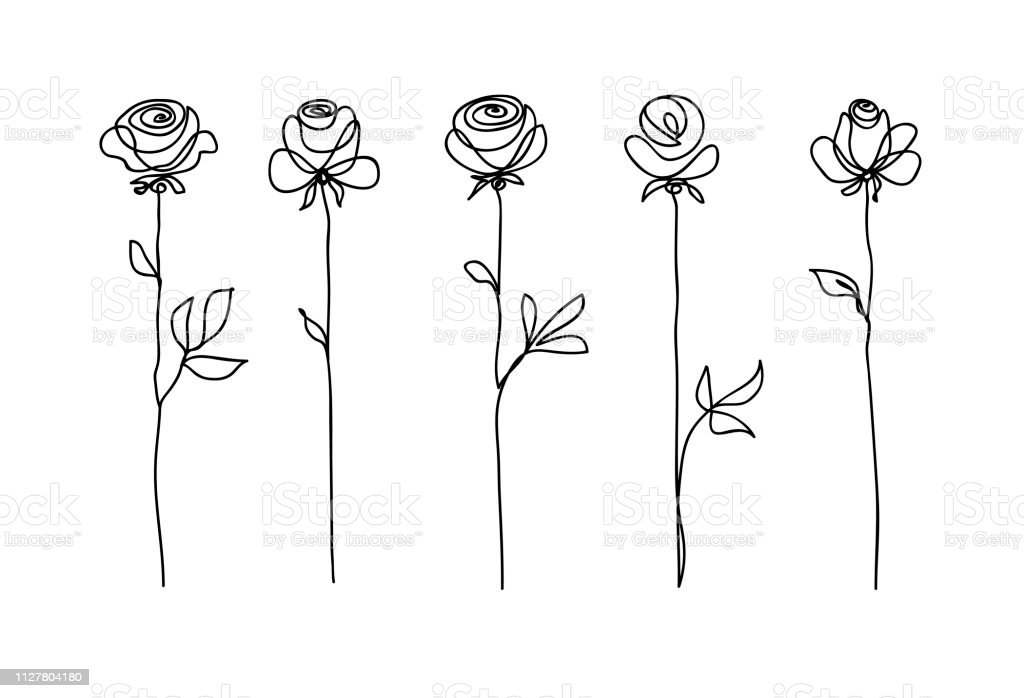 Rose flower set. Continuous drawing. Line art concept design. Stylish modern trend pattern for decoration of invitation card, banner royalty-free rose flower set continuous drawing line art concept design stylish modern trend pattern for decoration of invitation card banner stock illustration - download image now