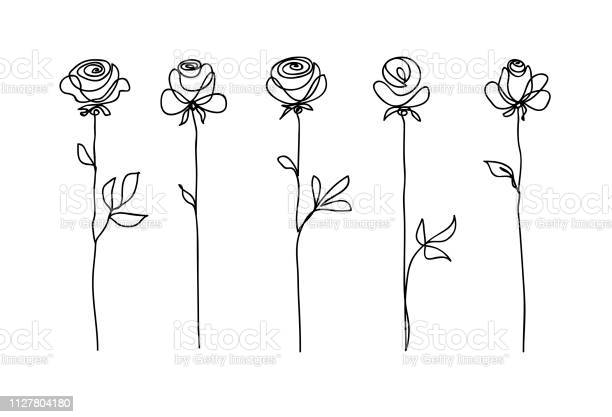 Rose flower set continuous drawing line art concept design stylish vector id1127804180?b=1&k=6&m=1127804180&s=612x612&h=e3wvxthlc w0anjzobesltacknubrzjj3uowwqz2ktk=