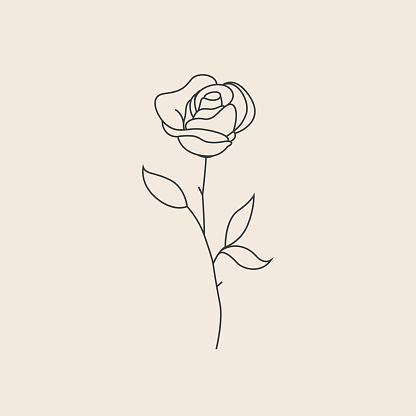 Rose flower thin line sketch icon or logo or tattoo design template. Vector illustration