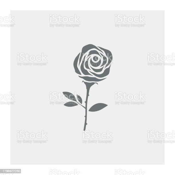 Rose flower vector id1196622250?b=1&k=6&m=1196622250&s=612x612&h=nqkjki1z0yu0qliuhfozsy9u5cgyl3jd1jmffmflbdu=