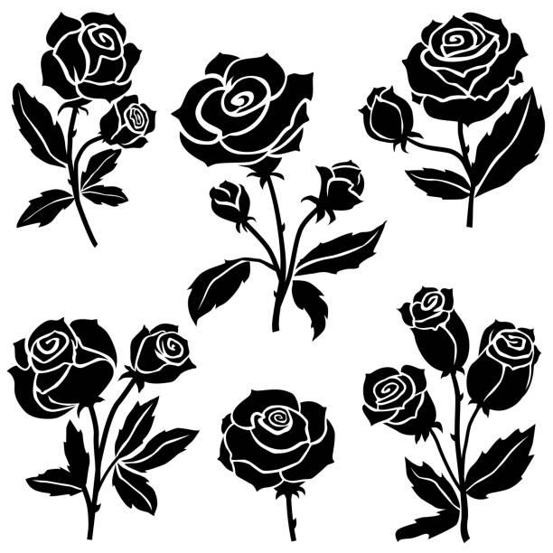rosen-blumen-kollektion - rose stock-grafiken, -clipart, -cartoons und -symbole