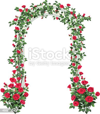 A white arbor is covered in red roses with two rose bushes near the ground.