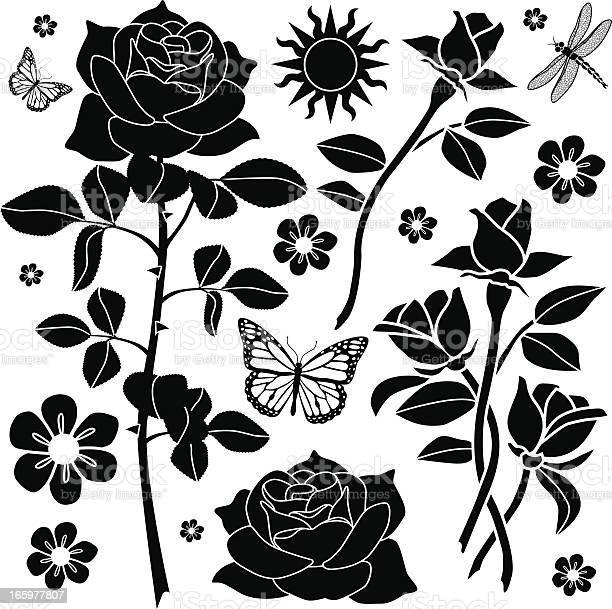 Rose garden design elements vector id165977807?b=1&k=6&m=165977807&s=612x612&h= njciuzxcidgok9o1zjgmkuq gzeebjyz7lq33dbl7o=