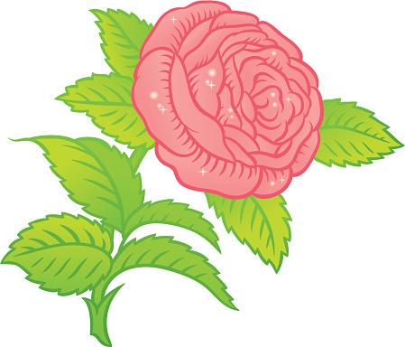 rose in classic retro style