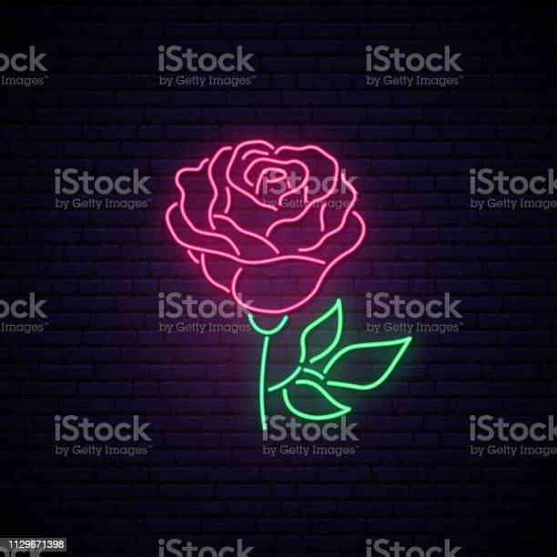 Rose neon sign light flower on brick wall background vector vector id1129671398?b=1&k=6&m=1129671398&s=612x612&h=wvlydrvnps5hlpivqxmxnnbxymwozwa212pgfdqaflw=