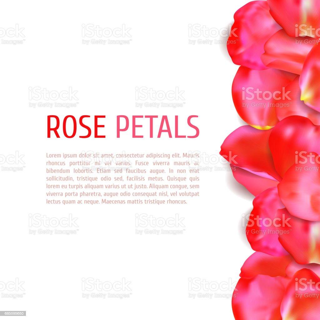 Rose petals border royalty-free rose petals border 4대 원소에 대한 스톡 벡터 아트 및 기타 이미지