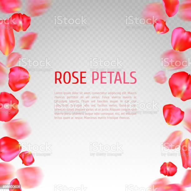 Rose petals border vector id698800608?b=1&k=6&m=698800608&s=612x612&h=gcmbboz4ca fjbq4firkuz7 2bahmjqrr rmd5mkuyw=