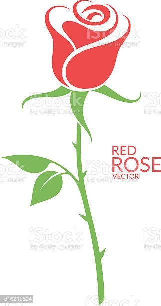 Rose red flower on white background vector id516215824?b=1&k=6&m=516215824&s=612x612&h=zcjlhprra sqdqa7m7k9p7nnkezypalhav5vl1zbhrq=