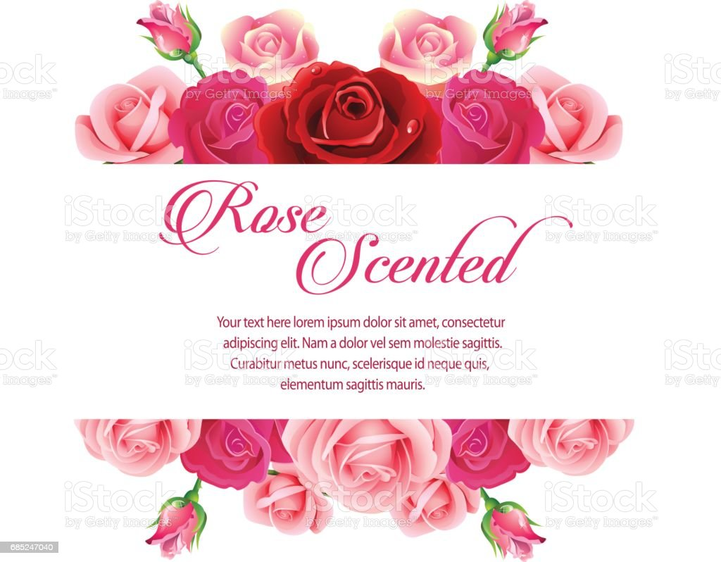rose scented royalty-free rose scented stock vector art & more images of blossom