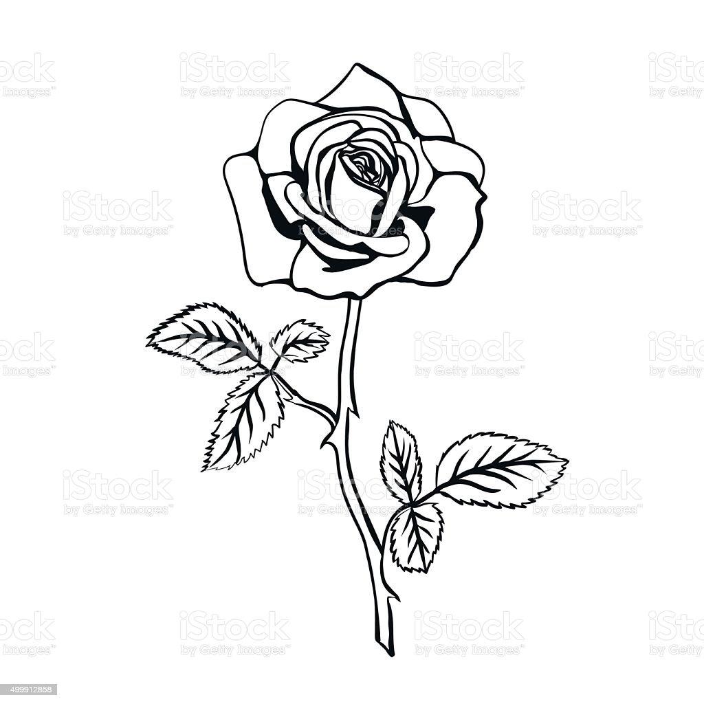 Tatuaje De Flores Imágenes De Archivo Vectores Tatuaje De Flores