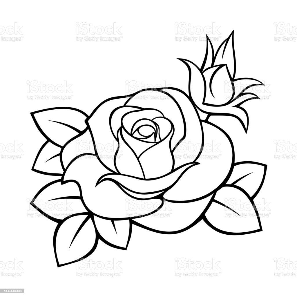 Ilustración De Color De Rosa Dibujo De Contorno Vectorial Blanco Y