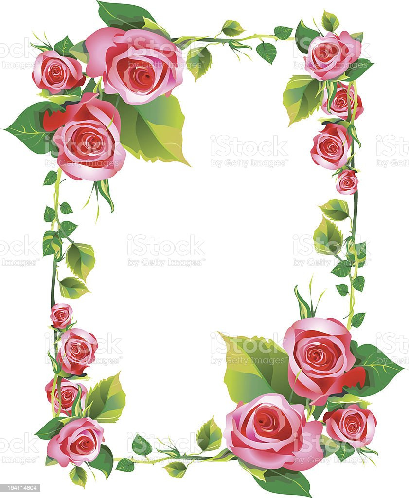 rose royalty-free rose stock vector art & more images of backgrounds