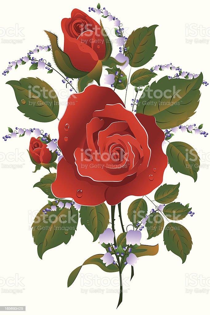 Rose.. royalty-free stock vector art