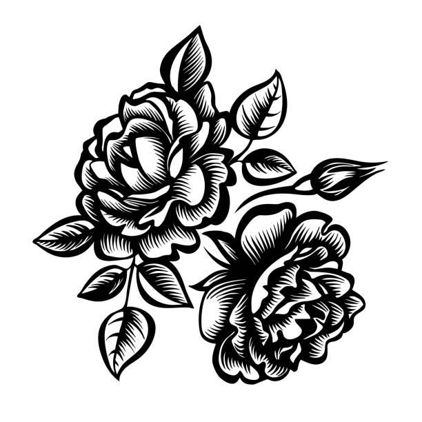 illustrations, cliparts, dessins animés et icônes de rose - tatouages de fleurs