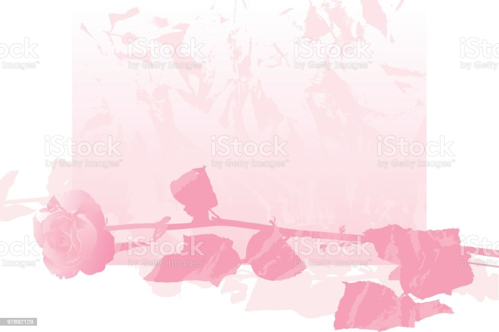 Rose royalty-free rose stock vector art & more images of color image
