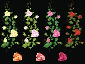 Self illustrated Rose Vine Set..select  your  rose colour.Please see some similar pictures from my portfolio: