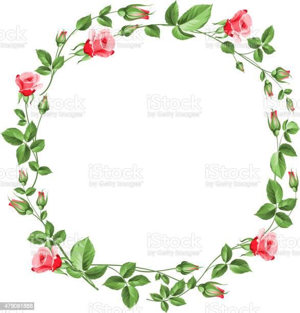 Rose wreath isolated on white vector id479061888?b=1&k=6&m=479061888&s=612x612&h=rziljgklrwey0hymxohu7ukcrdlm4r1m6uyfyaopabs=