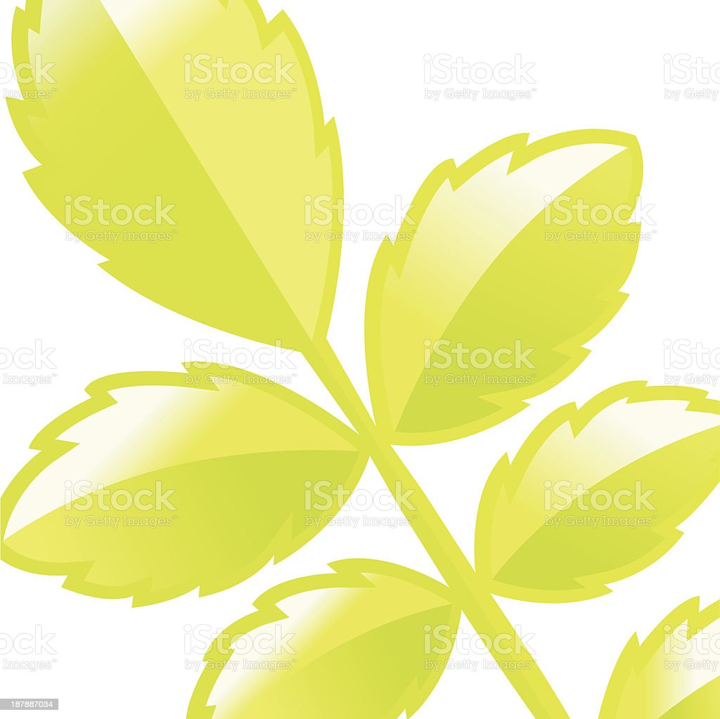 Roseleafdetail background. royalty-free stock vector art