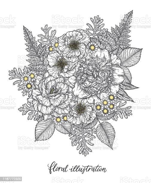 Roses and peonies flower bouquet hand drawn in lines black and white vector id1187772320?b=1&k=6&m=1187772320&s=612x612&h=d3djh6b2crbytr2vq0ay8npmle2pkww hclkhjkf 78=