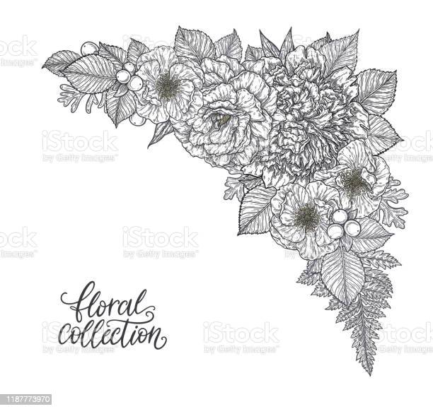 Roses and peonies flower bouquet hand drawn in lines black and white vector id1187773970?b=1&k=6&m=1187773970&s=612x612&h=zgqgzkzwmuylccam y1sxwmphm3czmt1tgcpcaenvu0=