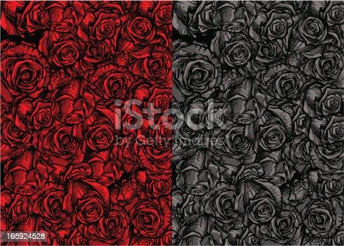istock Roses Background 165924528