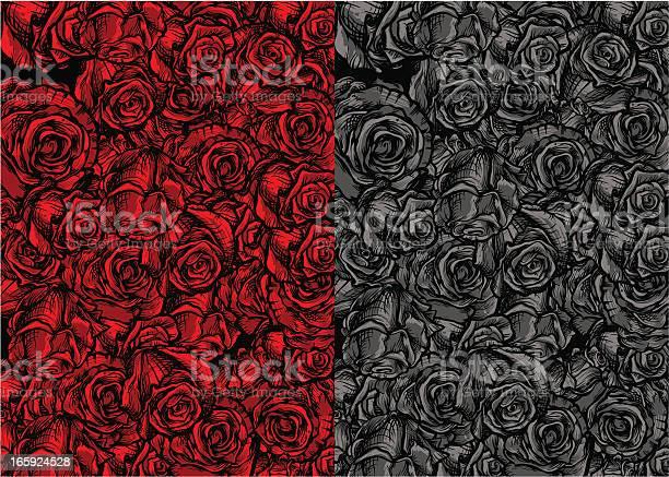 Roses background vector id165924528?b=1&k=6&m=165924528&s=612x612&h=b1wanu8w9zkitkr5inkvb5rnveietuuq5tltqwqurh4=