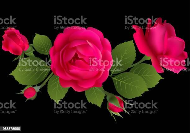 Roses floral background flower flower pattern bouquet petals red vector id968878966?b=1&k=6&m=968878966&s=612x612&h=wv2dtexz3fyz1srqziqwyoe8r9xqxbr5 nvrj2sxlv8=