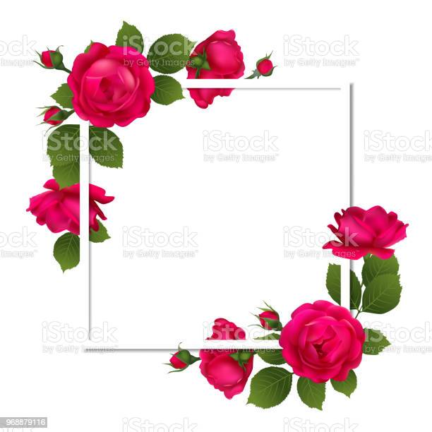 Roses floral background flowers flower pattern border petals buds red vector id968879116?b=1&k=6&m=968879116&s=612x612&h=tycnevmzxnrtjdbwr5qpwq78akztyotj fr1bevlnb8=