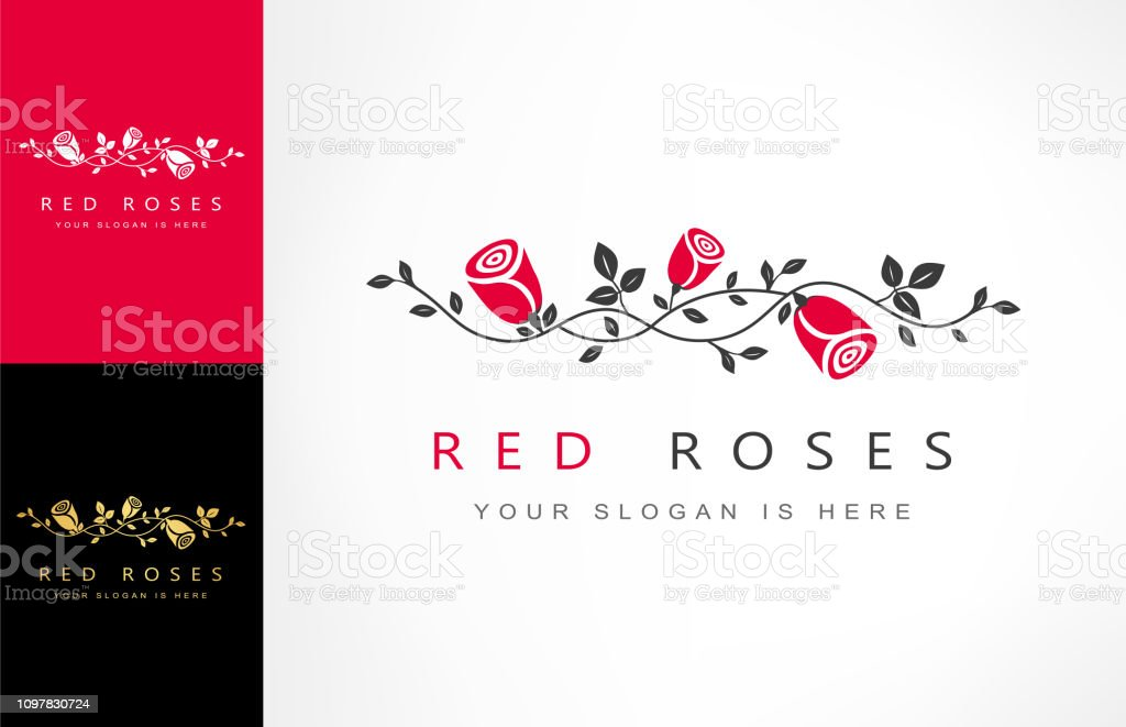 roses flowers, branch with roses vector