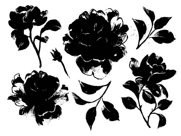 Roses set, black ink silhouettes floral set isolated on white. Large black roses silhouettes collection. Sketch style flat flower elements for prints, card, poster, banner, icons. anniversary drawings stock illustrations
