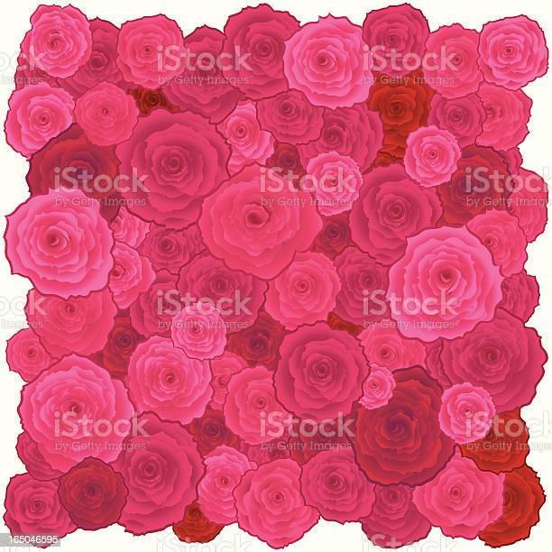Roses square vector id165046595?b=1&k=6&m=165046595&s=612x612&h=ixz8uivvzpc8zsukvmar awptojgw f7d6vusgzx5lk=