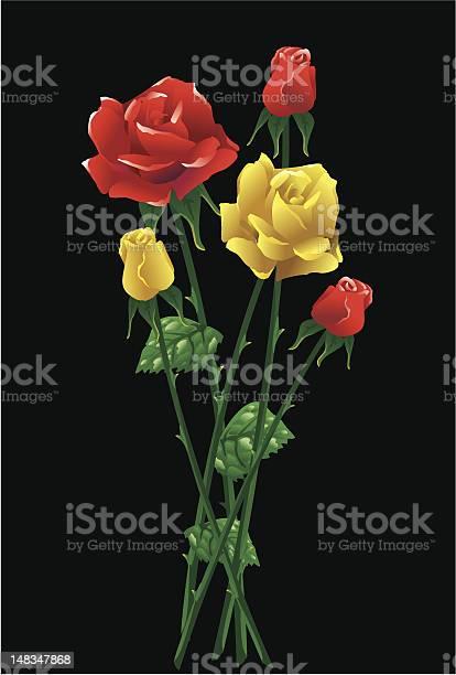 Roses vector id148347868?b=1&k=6&m=148347868&s=612x612&h=mnzk5vbhj8tnlzu3xpeyhs2p3 ml0lwxwg4m0zowsro=
