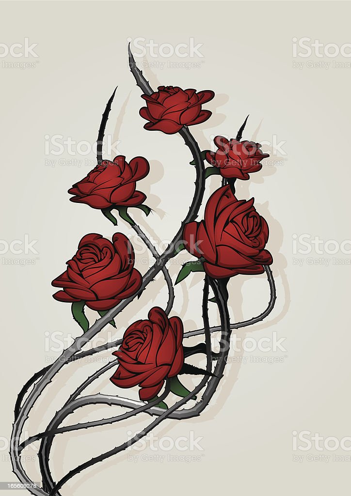 Rose bush with thorns