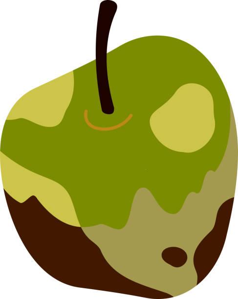 rotten apple illustration 2 - rotten apple stock illustrations, clip art, cartoons, & icons