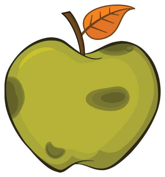 rotten green apple fruit with leaf cartoon drawing simple design - rotten apple stock illustrations, clip art, cartoons, & icons
