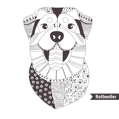 Rottweiler. Coloring book