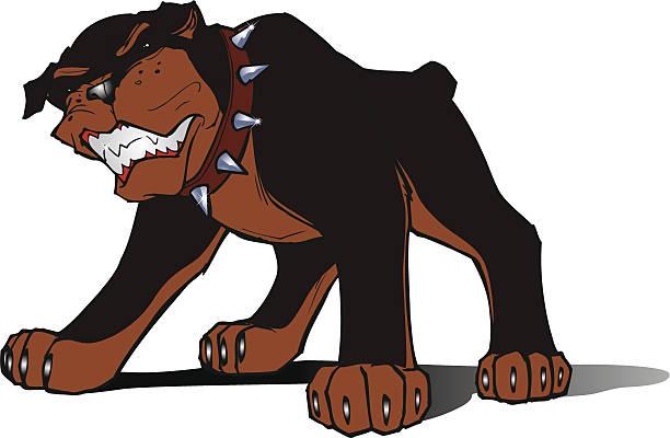 Rottweiller dog vector art illustration