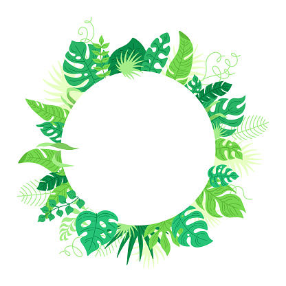 Round background tropical leaves cartoon vector