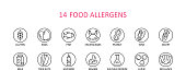 14 round food allergens icon. Vector set of 14 icons. Collection includes gluten, fish, egg, crustacean, peanut, lupin, soya, milk, trees nuts, mustard, sesame, sulphur dioxide.