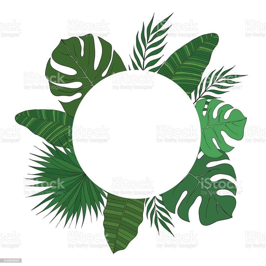 round frame of palm tree leaves tropical card or banner stock vector rh istockphoto com