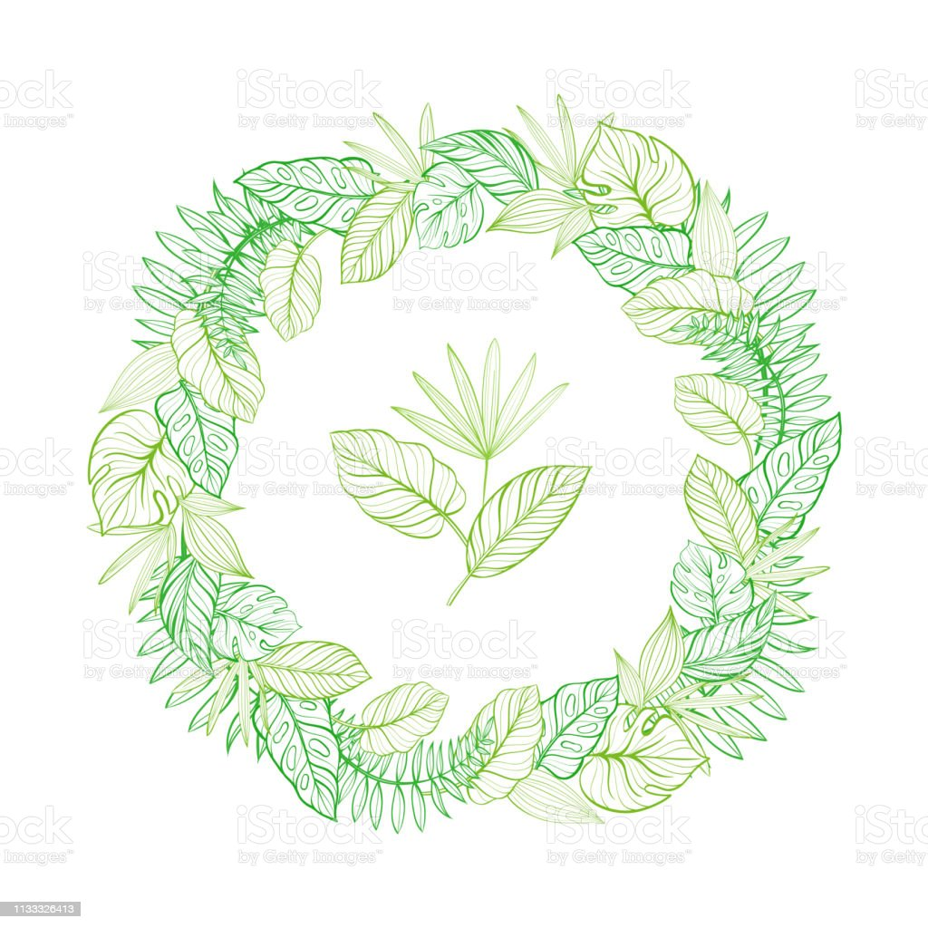 Round Frame With Tropical Leaves Template For Your Postcard Handdrawn Linear Illustration Stock Illustration Download Image Now Istock Leaf tropical tropical leaves leaves tropical leaf leaf leaves decoration decorative symbol element background nature decor ornate ornament icon natural backdrop plant template color ornamental. https www istockphoto com vector round frame with tropical leaves template for your postcard hand drawn linear gm1133326413 300756031