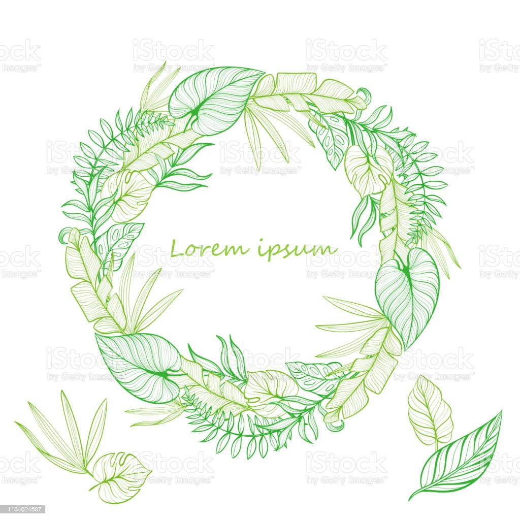 Ju34h1ftawynxm Search more hd transparent tropical leaves image on kindpng. 1