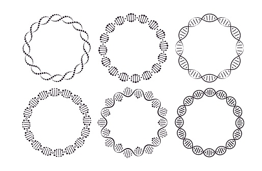 DNA round frames. Circle framing with genome helix structure isolated on white background vector set. Six pattern brushes in panel