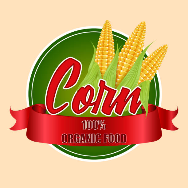 Runde Etiketten oder Aufkleber mit Maiskolben. Vektor-Illustration von Bio-Produkten. – Vektorgrafik