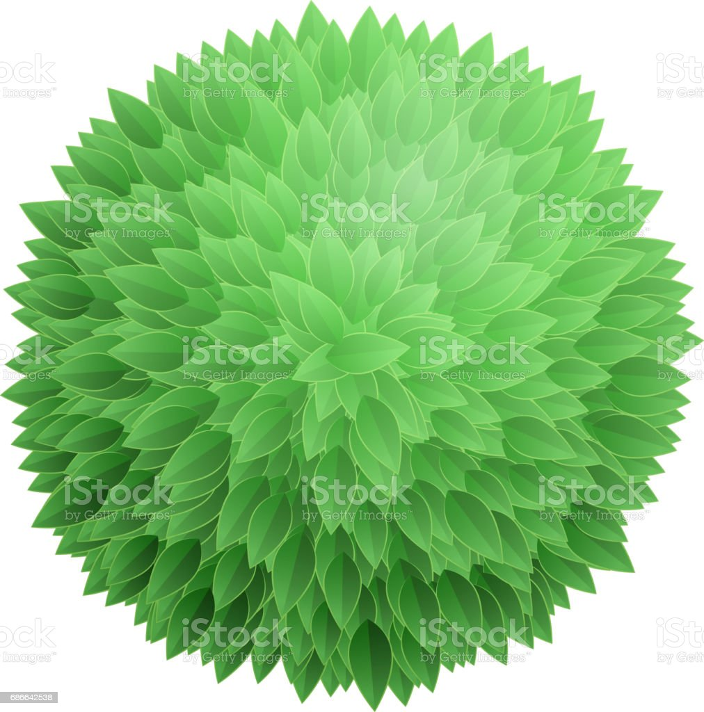 Christmas Tree Top View.Round Leaves Background Tree Top View Stock Illustration