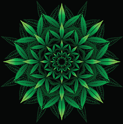 Round pattern from cannabis leaf on black