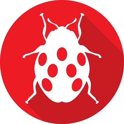Round Red Ladybug Icon