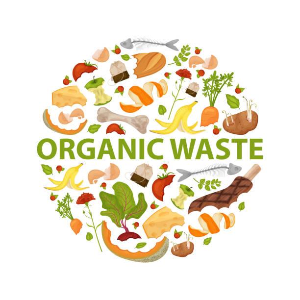 ilustraciones, imágenes clip art, dibujos animados e iconos de stock de plantilla redonda tema de residuos orgánicos - leftovers